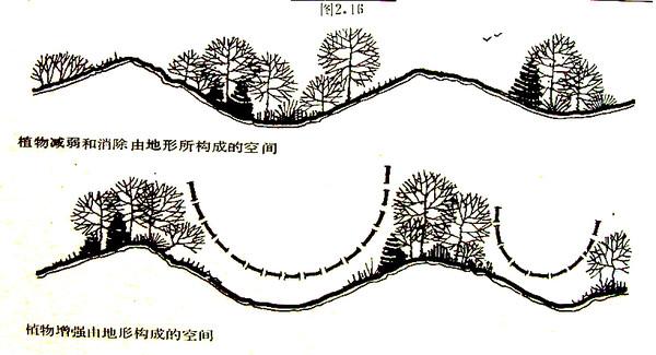 植物配置一-文字资料-三川手绘